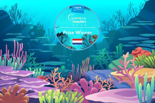 Reef Support Wins the Copernicus Masters 2020 Competition
